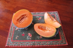 Melon - Cantaloupe - Tuscan Napoli - 016