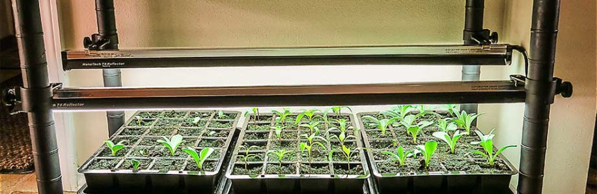 Review Stack N Grow Light System Susan S In The Garden
