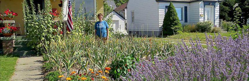Kathleen Callum, front yard vegetable gardens