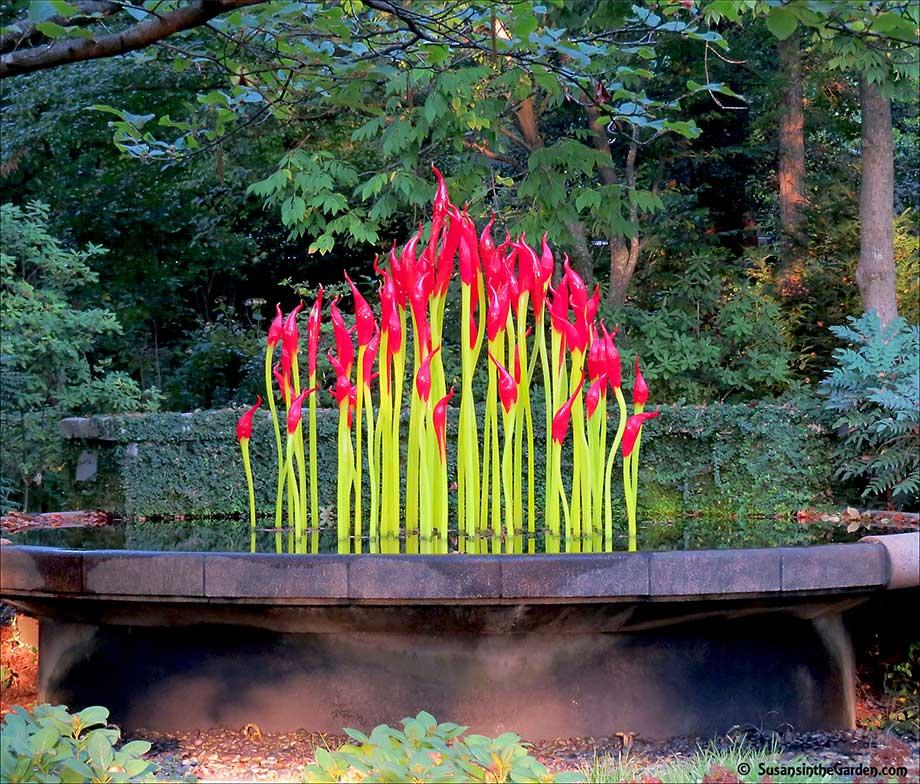 Atlanta Botanical Garden Skyline Gardens: Atlanta Botanical Garden