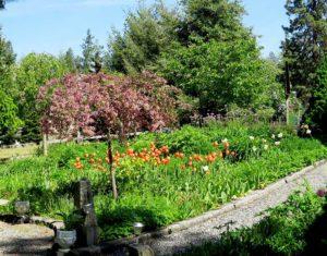 Spokane in Bloom garden tour