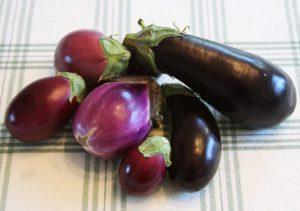 Harvest Vegetables, eggplants